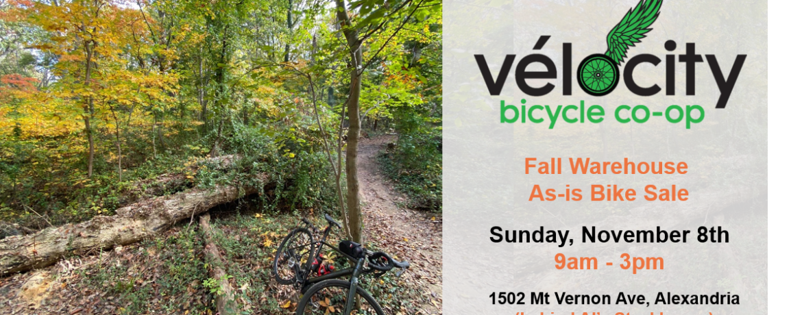 Fall scene of gravel bike in a wooded area